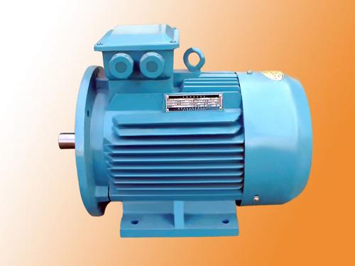 我公司专业生产Y2系列三相异步电动机等产品。